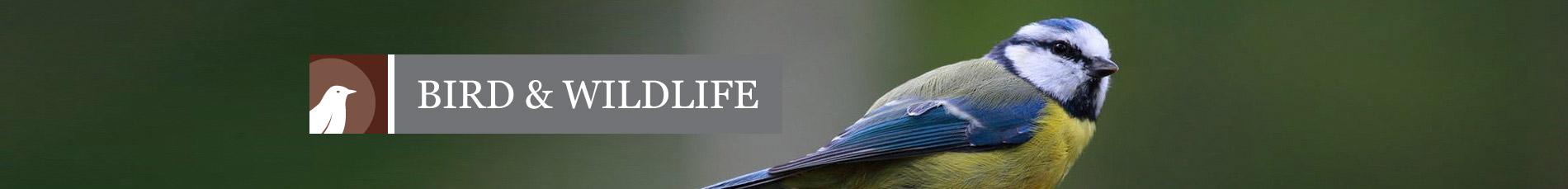 Bird & Wildlife Banner