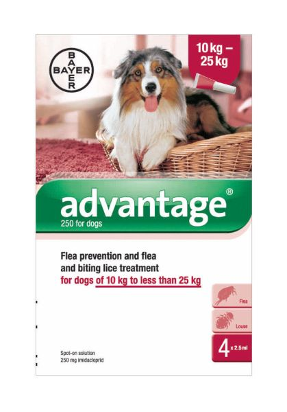 Picture of Bayer Advantage 250 Spot-On Solution Dogs 4 x 2.5ml Pipette 10-25kg