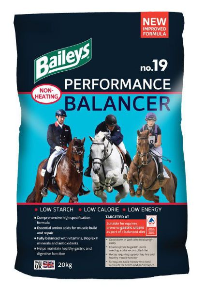 Picture of Baileys No 19 Performance Balancer 20kg