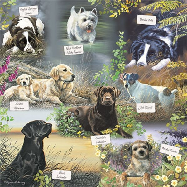 Picture of Otter House Jigsaw Puzzle Square 1000 Piece -Mans Best Friend