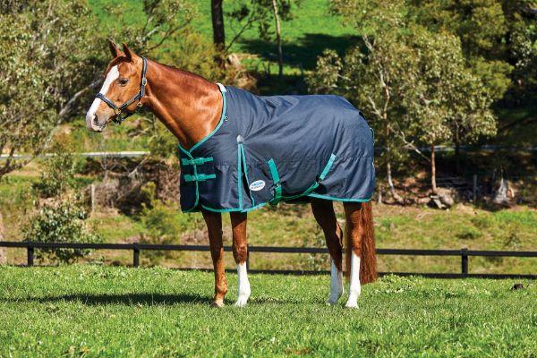 Picture of Weatherbeeta Comfitec Classic Standard Neck Medium Black/Green