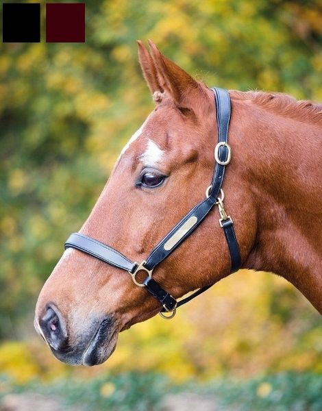 Picture of Aviemore Leather Nameplate Headcollar