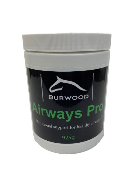 Picture of Burwood Airways Pro 925g