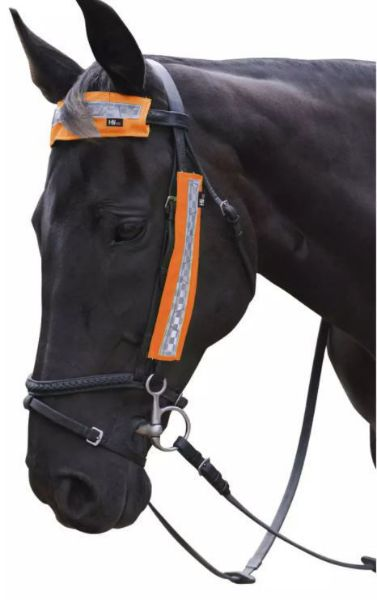 Picture of HyViz Bridle Bands Orange
