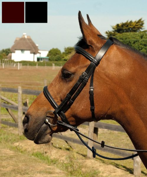 Picture of Heritage Leather Plain Bridle