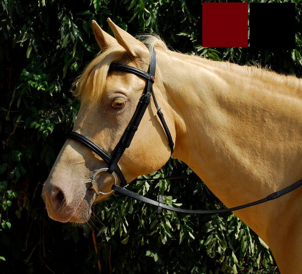 Picture of Windsor Plain Bridle