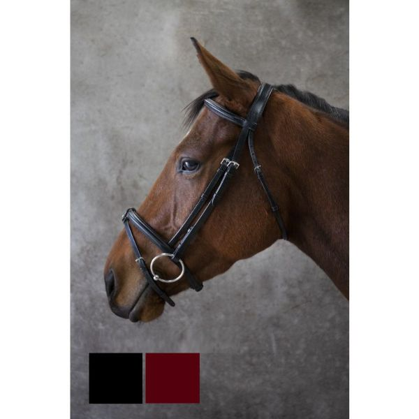 Picture of Eco Rider Classic Comfort Bridle