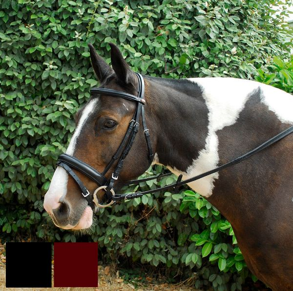 Picture of Windsor Comfort Bridle
