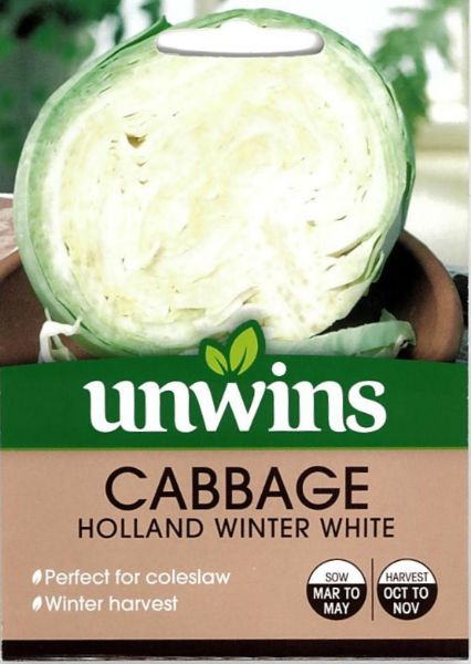 Picture of Unwins Cabbage Holland Winter White Seeds