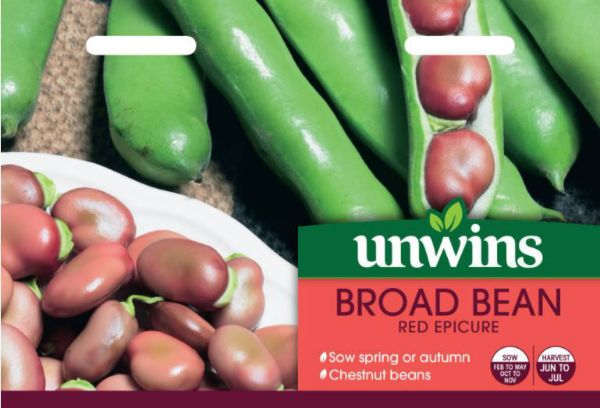 Picture of Unwins Broad Bean Red Epicure Seeds