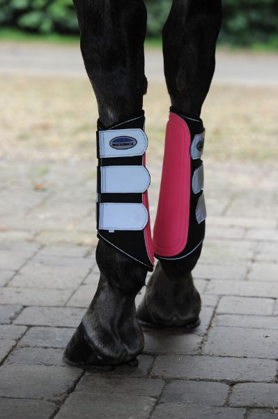Picture of Weatherbeeta Reflective Single Lock Brushing Boots Pink/Silver